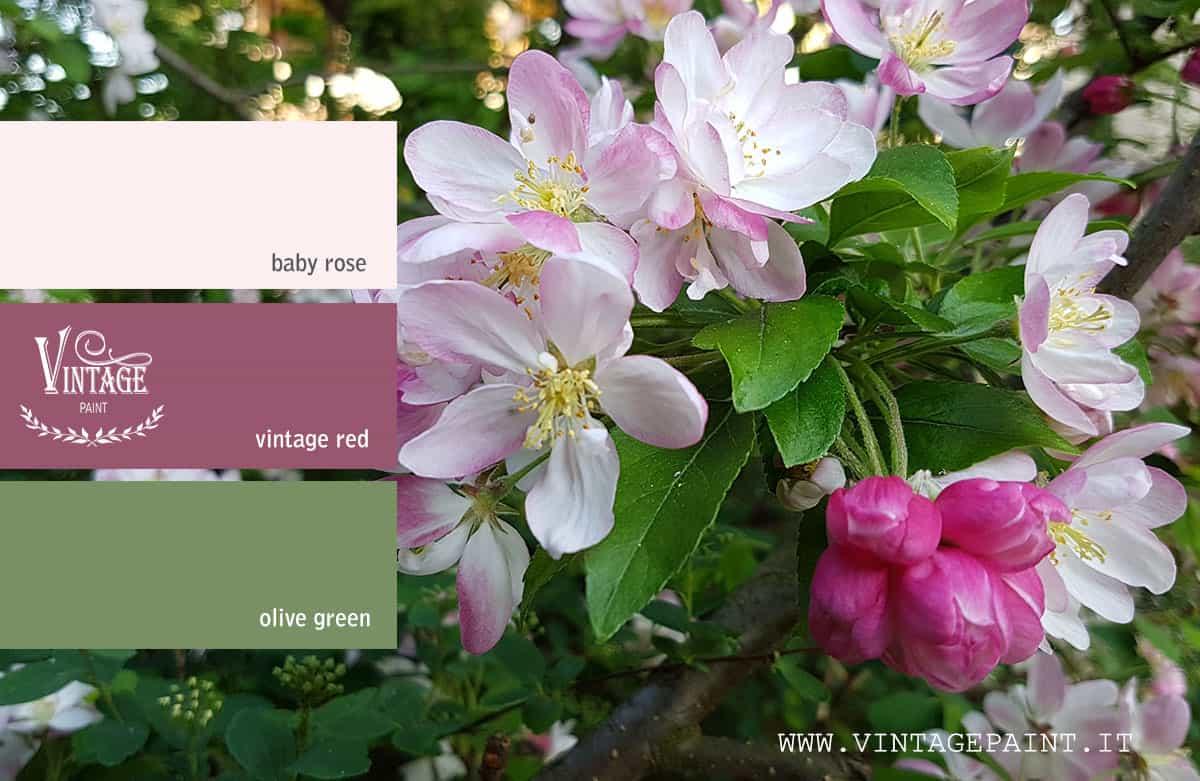 ciliegio abbinamento colori vintage chalk paint colori shabby
