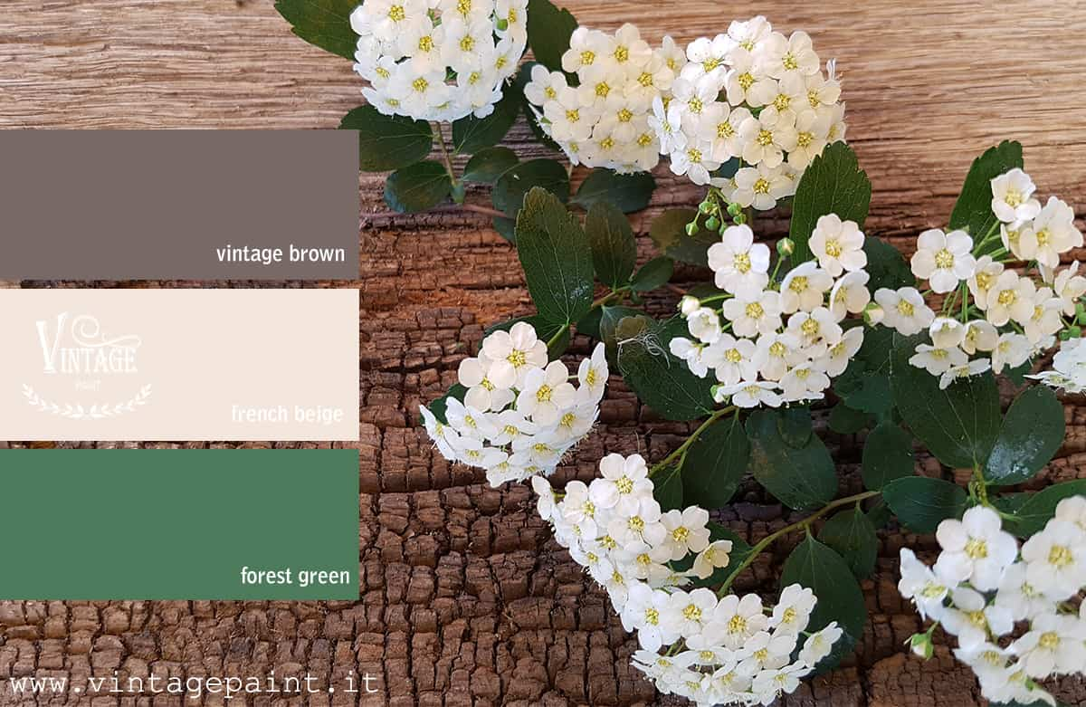 rustico abbinamento colori vintage chalk paint colori shabby