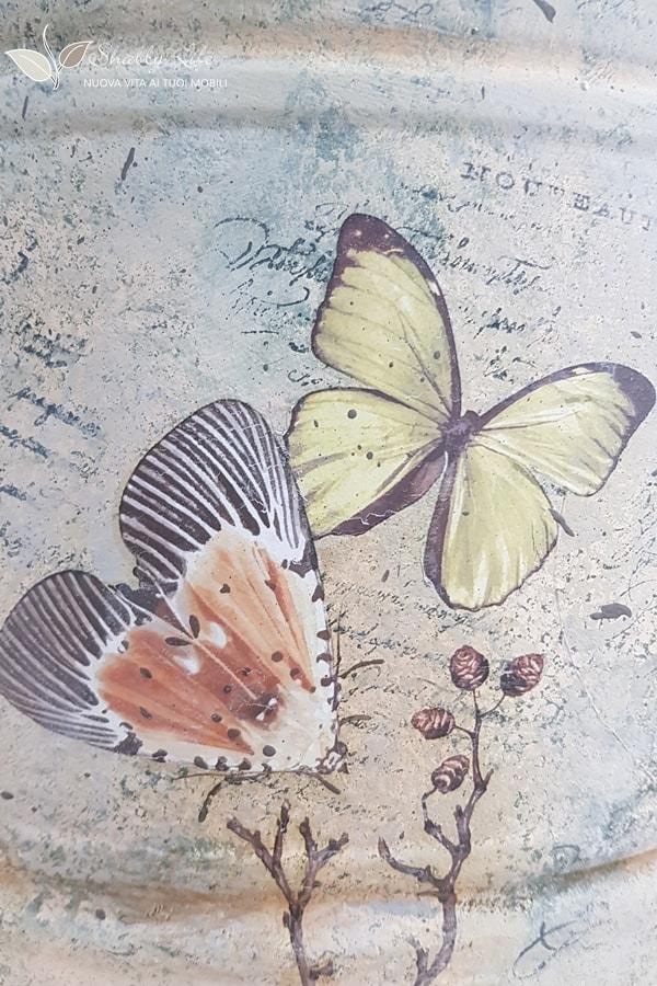 transfer farfalle Redesign IOD